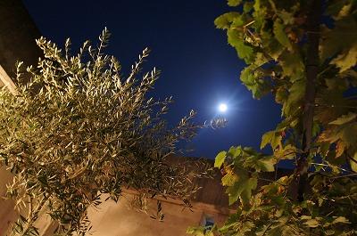 お月見 031.jpg