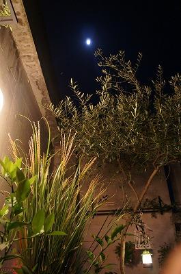 お月見 053.jpg