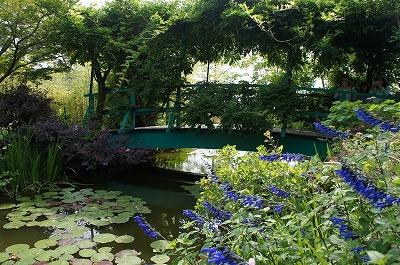 の庭モネ 084.jpg