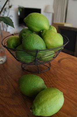 レモン 019.jpg