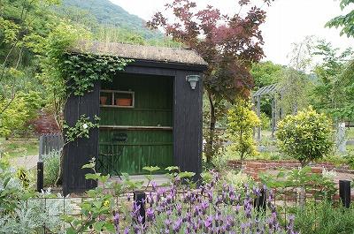 庭めぐり三田 133.jpg