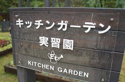 KG善通寺 043.jpg