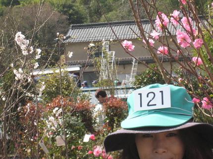 IMG_3284.JPG